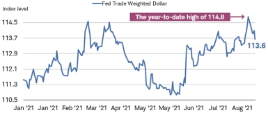 The US Federal Reserve Trade-Weighted Nominal Dollar Index was at 113.6 points as of August 27, slightly below its year-to-date high of 114.8 points.
